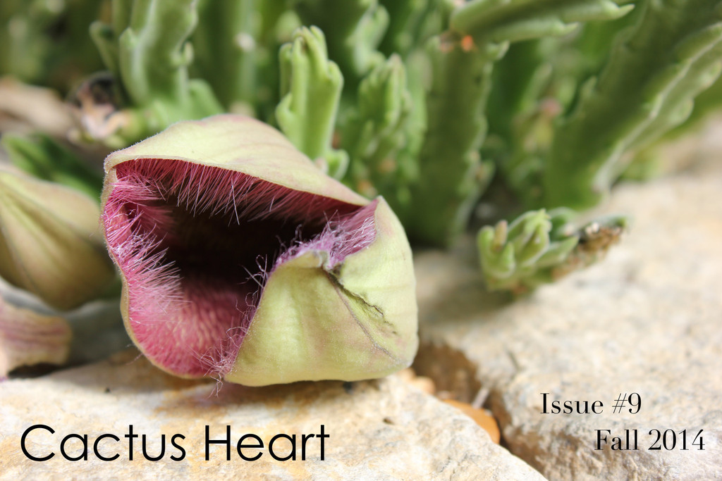 """Fern"" published in Cactus Heart Issue 9"